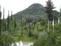 Monte Cronos